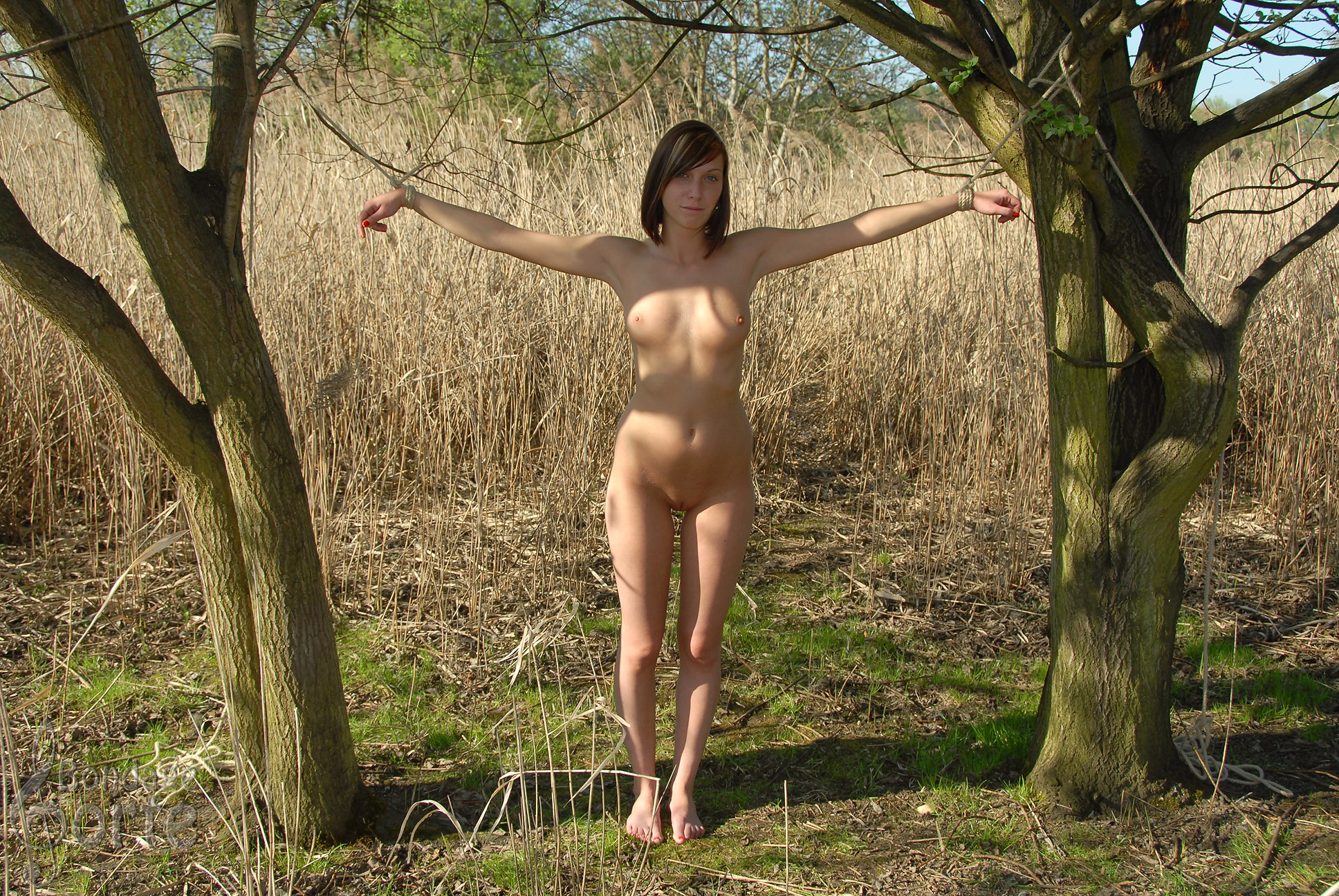 Forest mans nudes girls hd photos softcore images